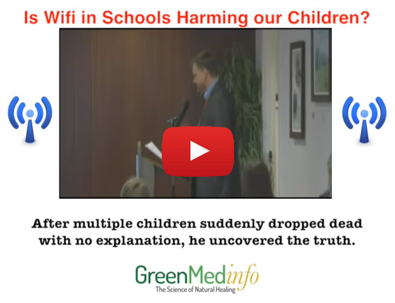 Is Wifi in Schools Harming Our Children